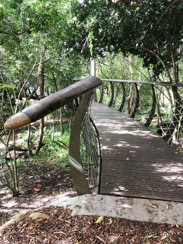 The Boomslang - Kirstenbosch Botanical Garden in Cape Town - outsidesuburbia.com