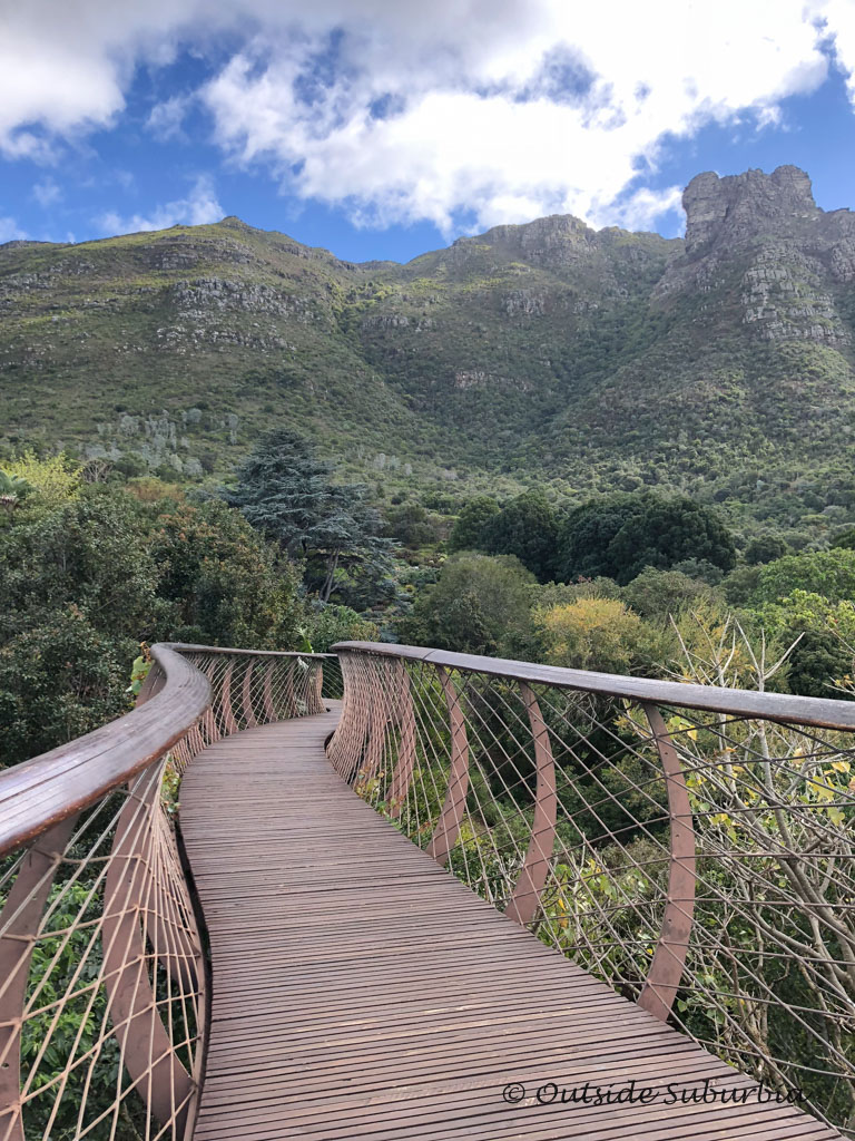 An Afternoon At The Kirstenbosch Botanical Garden In Cape