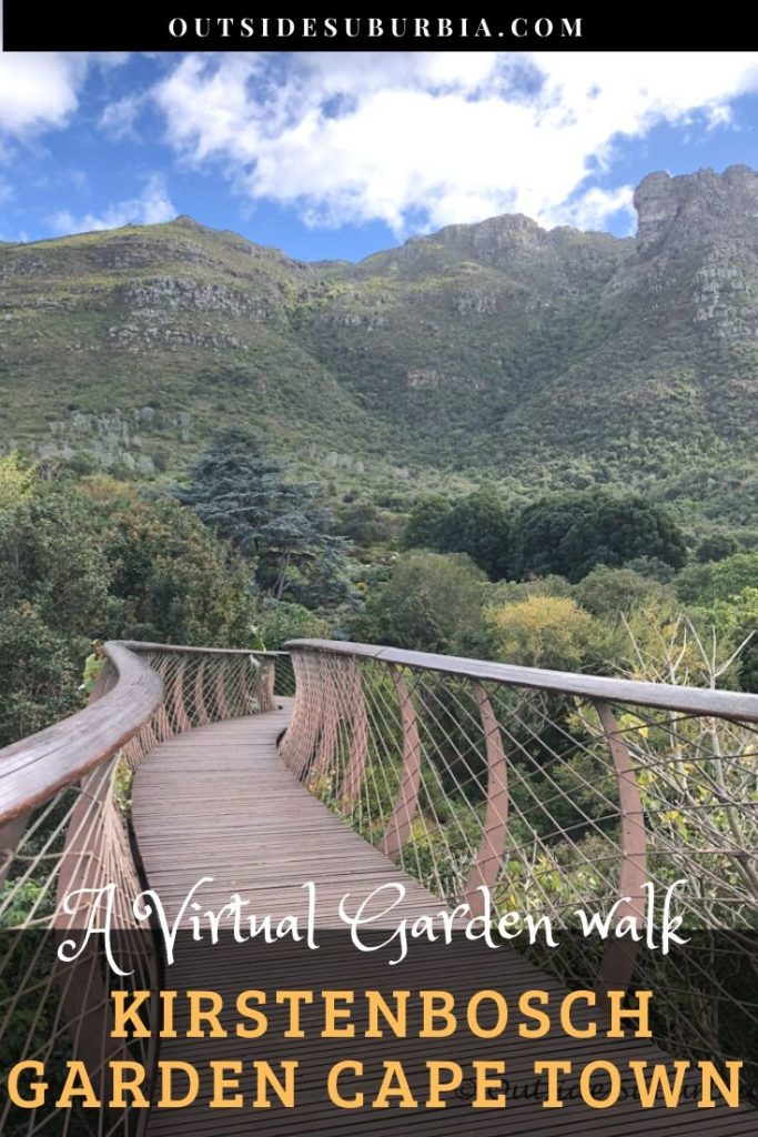 Kirstenbosch Botanical Garden in Cape Town - Outside Suburbia