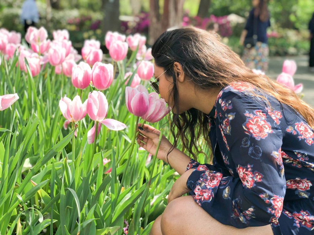 Dreaming of Tulips & Spring at the Dallas Arboretum - outsidesuburbia.com