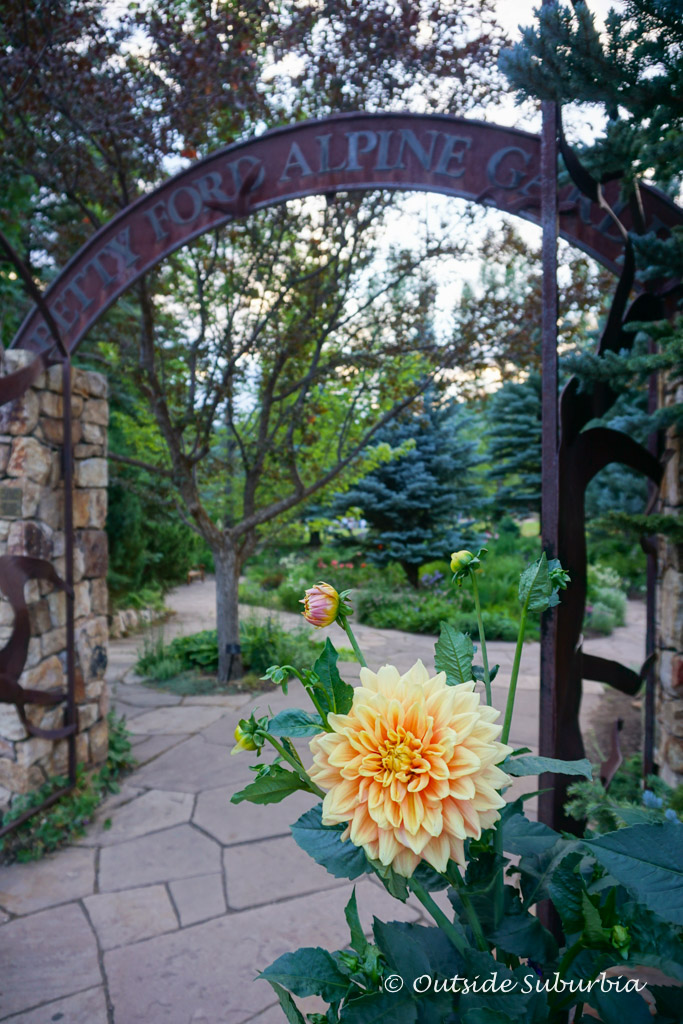 Betty Ford Alpine Gardens, Vail, Colorado - Outside Suburbia