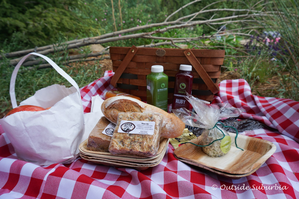 Picnic in Vail, Colorado