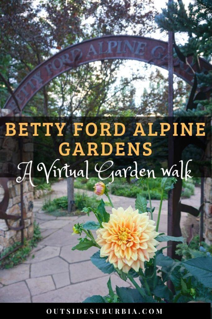 A virtual walk in Betty Ford Alpine Gardens in Vail Colorado