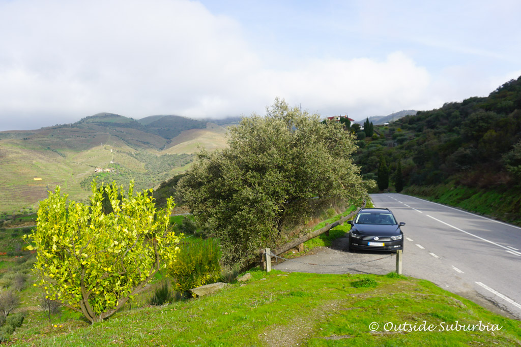 A Scenic drive along the Douro River Valley - Outside Suburbia