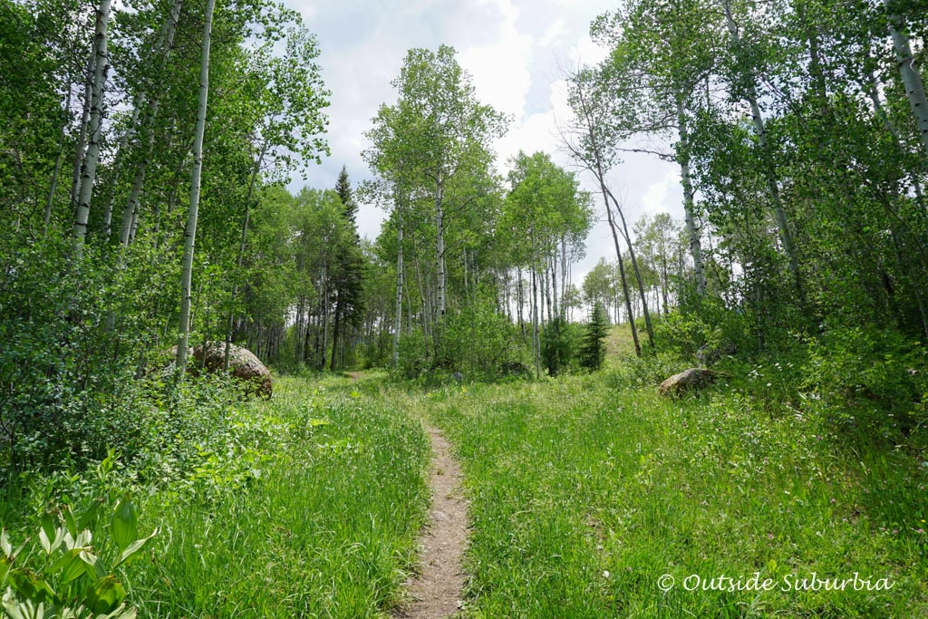 Hiking in Vail, Colorado Photo by OutsideSuburbia