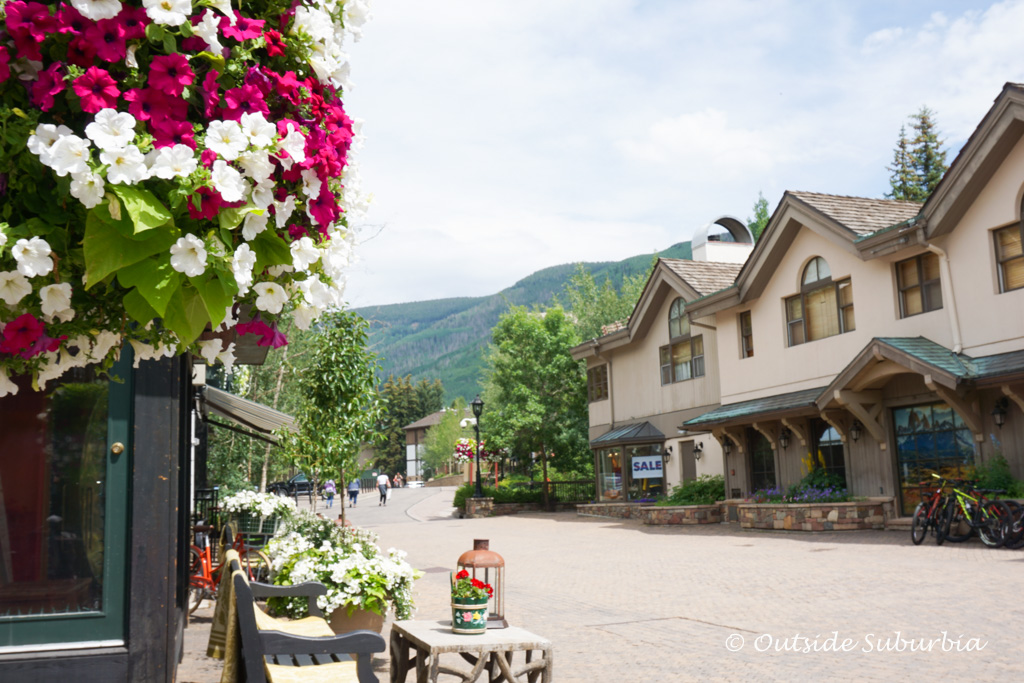 Flowers at Manor Vail, Colordo - Outside Suburbia