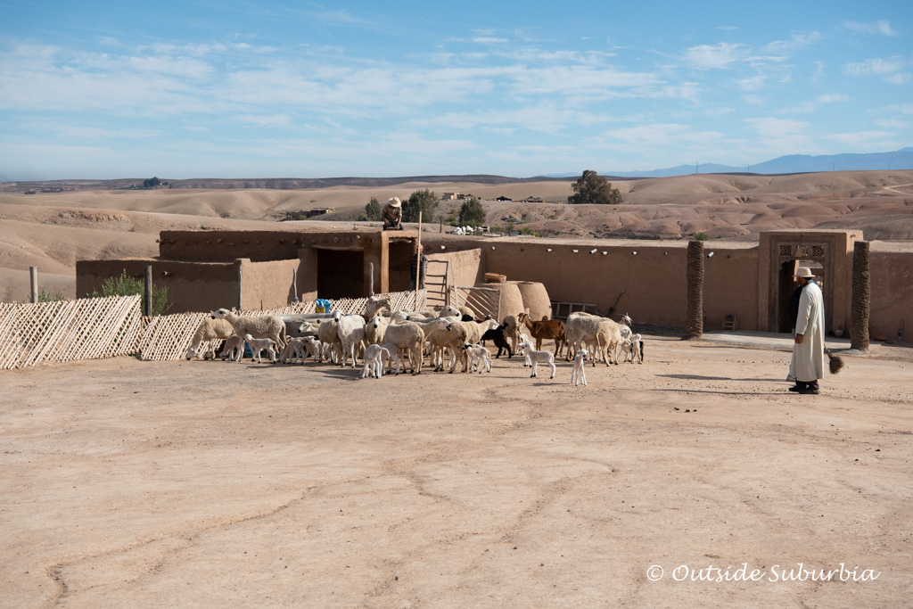 Agafay Desert near Marrakech | Outside Suburbia