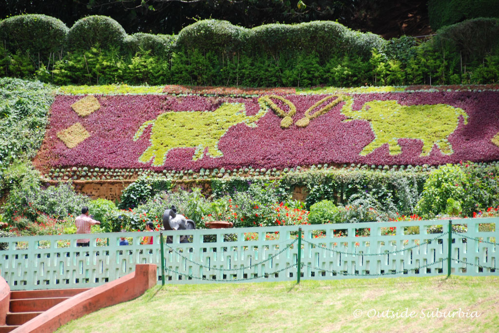 Botanical Garden, Ooty | Outside Suburbia