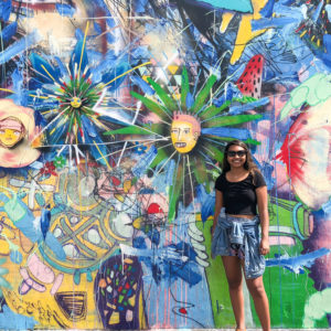 Wynwood Wall Murals in Miami | Outside Suburbia