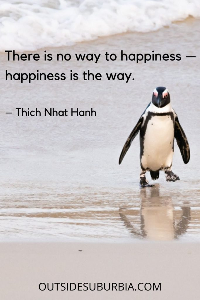 """""""There is no way to happiness — happiness is the way.""""  – Thich Nhat Hanh"""