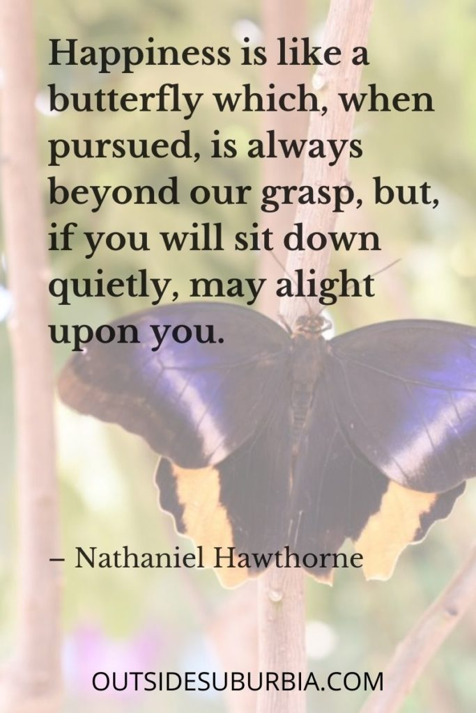 """50 Best Happy Quotes: Quotes About Happiness  """"Happiness is like a butterfly which, when pursued, is always beyond our grasp, but, if you will sit down quietly, may alight upon you."""" – Nathaniel Hawthorne"""