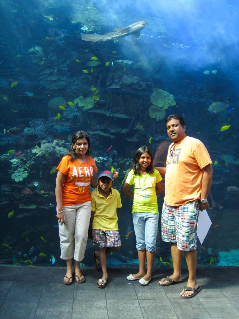 Georgia Aquarium | Outside Suburbia