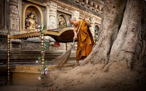 Buddha's enlightenment site