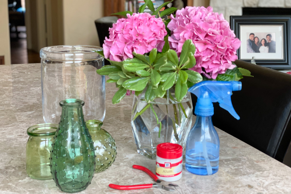 How to keep cut hydrangeas bouquets looking fresh   Outside Suburbia