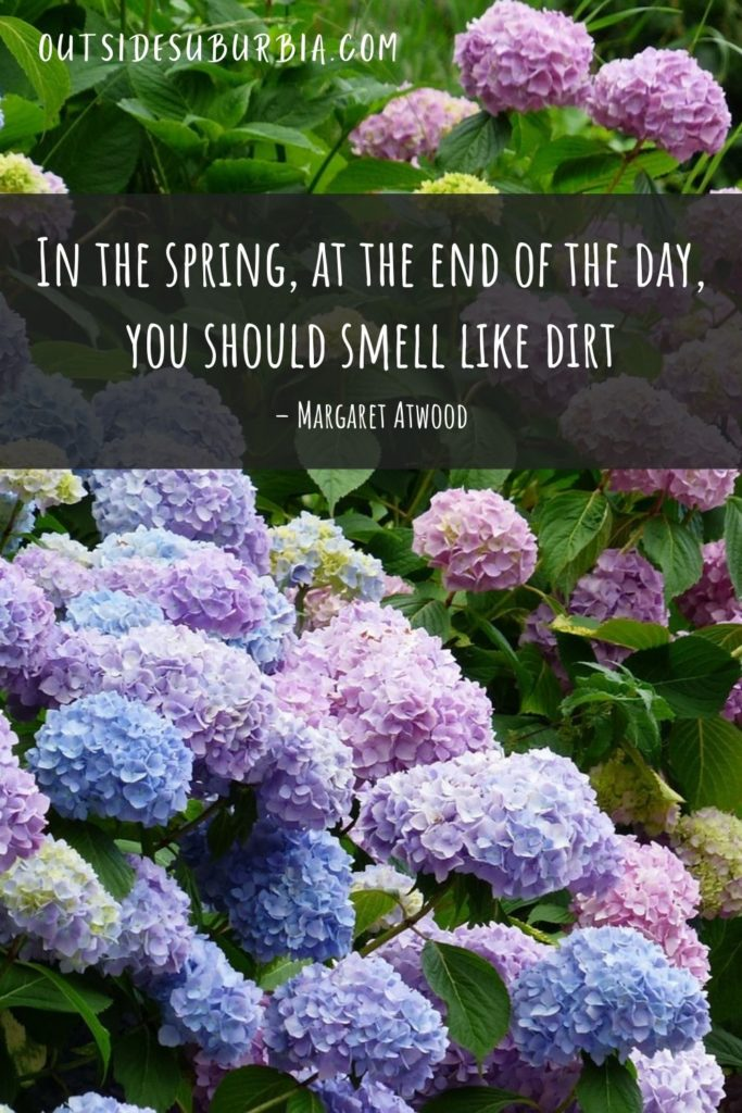 Beautiful Spring Quotes and Captions   Outside Suburbia
