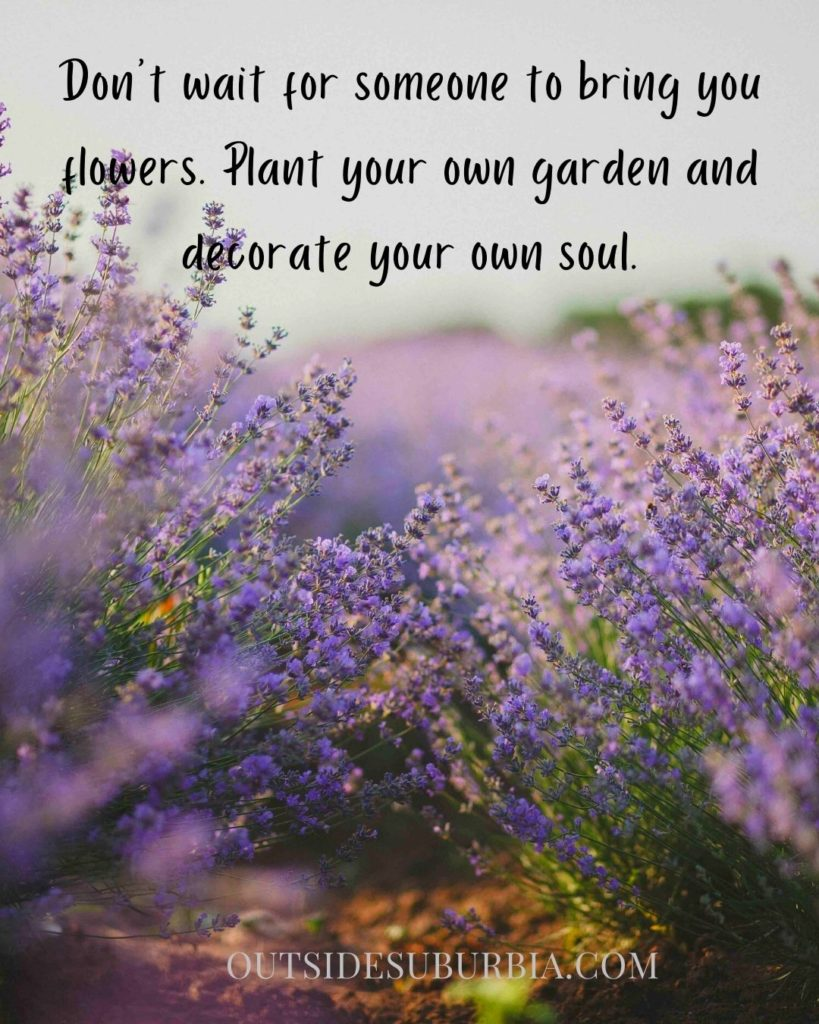 Inspiring Flower Quotes and Captions   Outside Suburbia