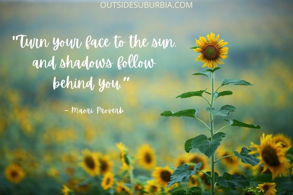 Turn your face to the sun, and shadows follow behind you   Beautiful Sunflower Quotes and Captions   Outside Suburbia
