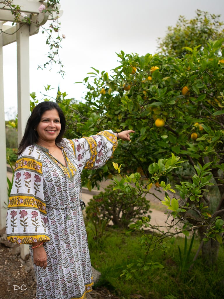 A hidden gem in Maui | Outside Suburbia