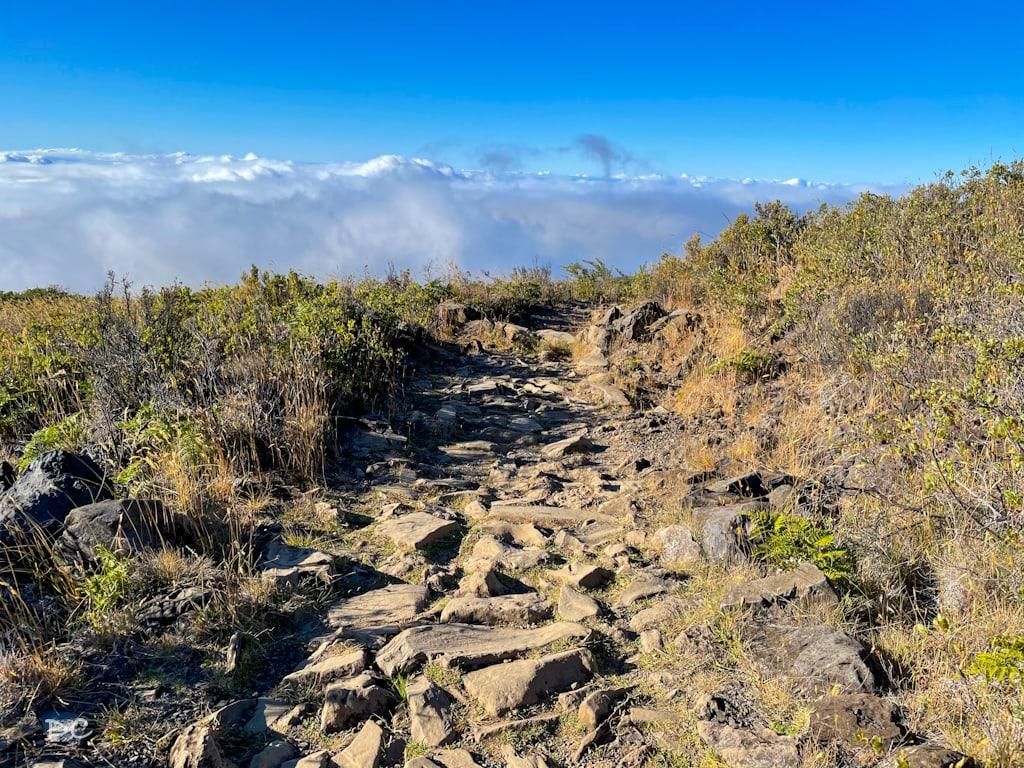 Best Hiking trails at Haleakala National Park | Outside Suburbia