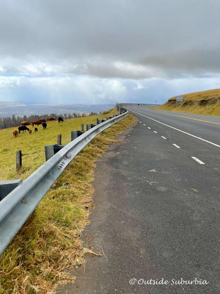 Driving in Haleakala | Outside Suburbia