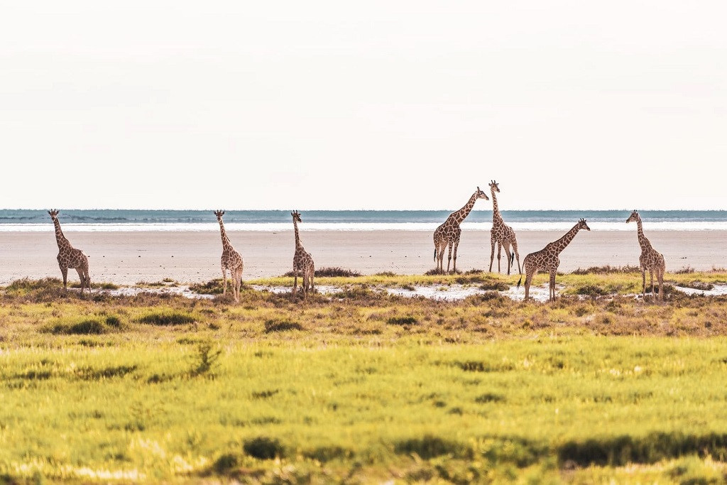 9 Eco-Tourism Destinations in Africa | Outside Suburbia