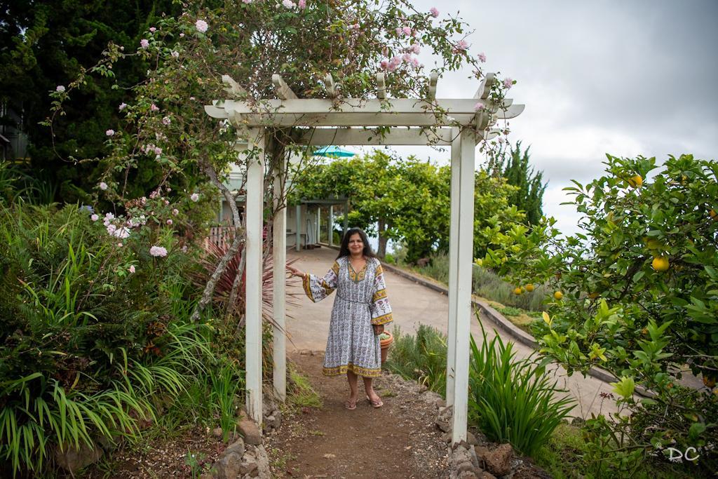 Maui Lavender Farm | Outside Suburbia