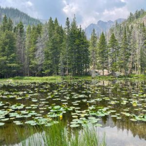 Best things to do in Rocky Mountain National Park | OutsideSuburbia