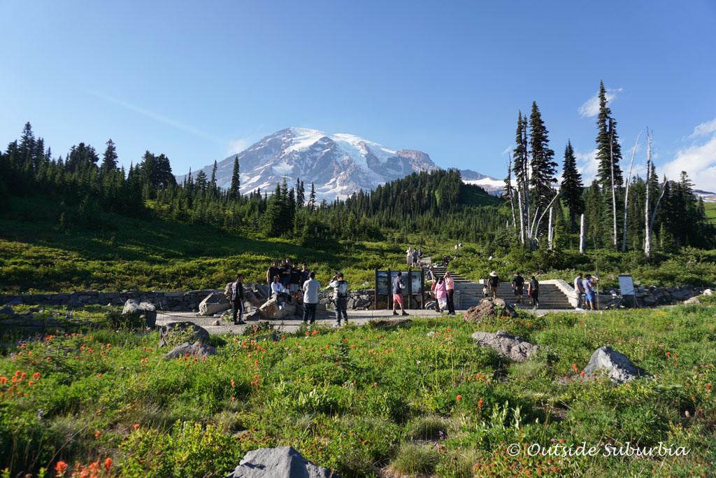 Easy hike, Paradise, Mt Rainier National Park | OutsideSuburbia