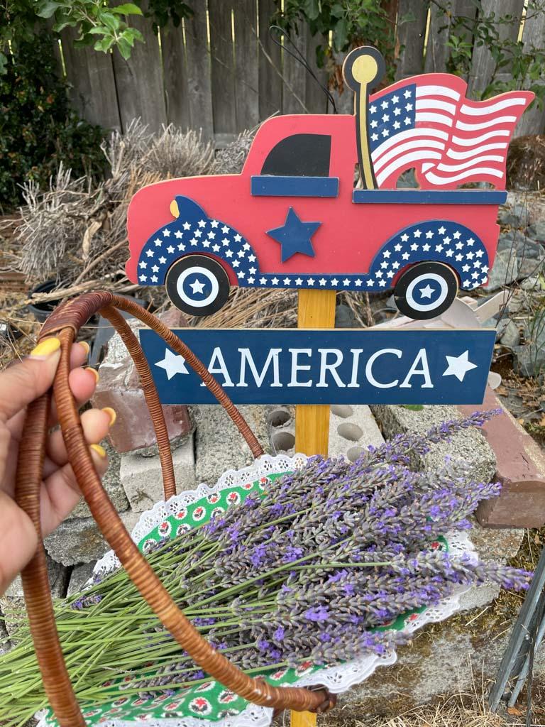 Lavender Field near Seattle   Outside Suburbia