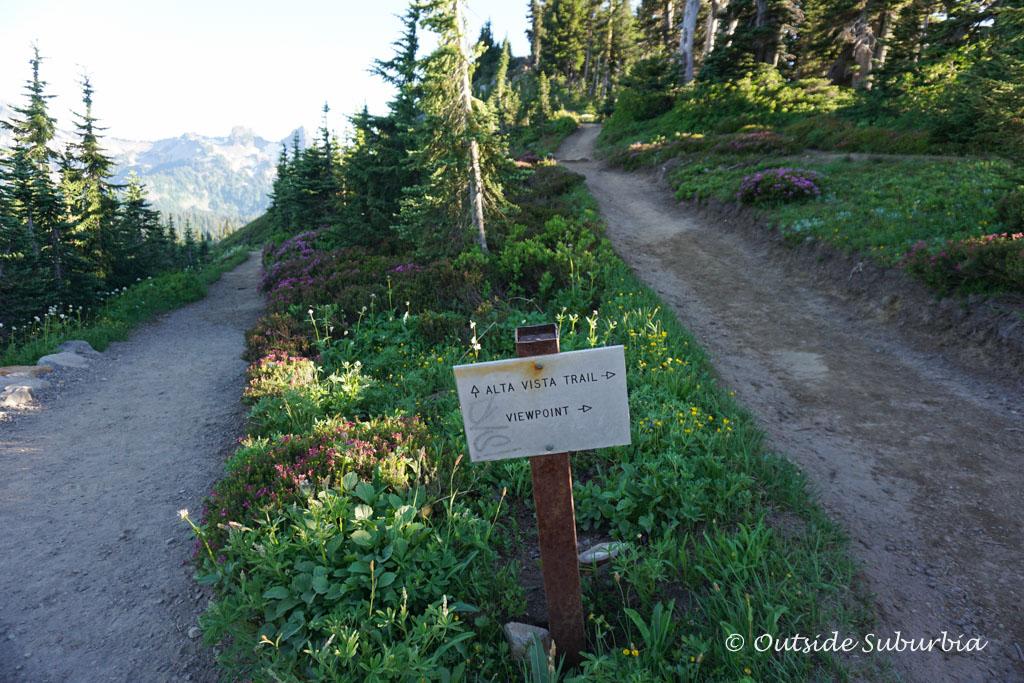 Alta Vista Trail in Mount Rainier National Park | Outside Suburbia