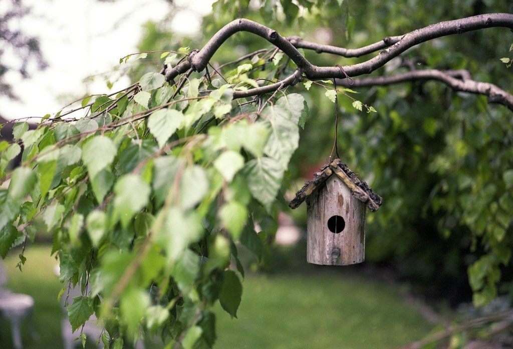 How to Turn Your Outdoor Space Into A Relaxing Haven | OutsideSuburbia