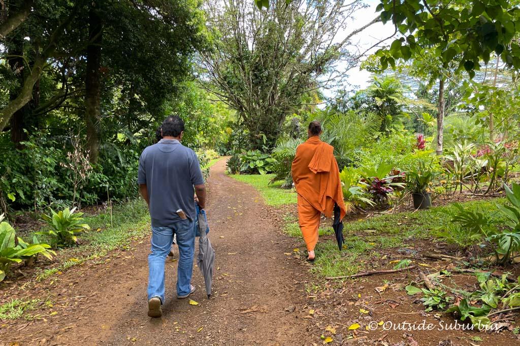 Sacred Rudraksha Grove, Kauai, Hawaii   OutsideSuburbia